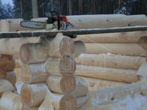 Строительство дома из бревна зимой