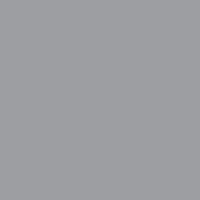 Сигнально-серый (RAL 7004)