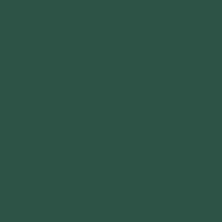 темно-зеленый / RR 11 (RAL 6020)
