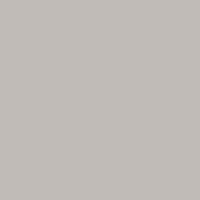 светло-серый / RR 21