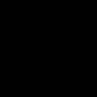 черный / RR 33 (RAL 9005)